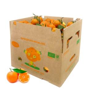 10 kg Mandarinen