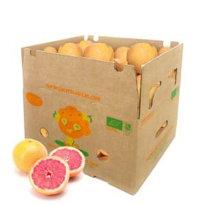 10 kg Grapefruits