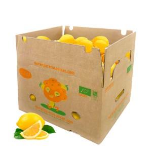 10 kg Zitronen