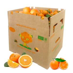 15 kg Orangen u. Mandarinen