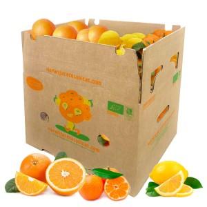 15 kg Orangen, Mandarinen u. Zitronen